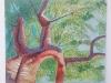 De Zonneboom
